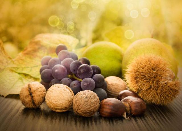 Favorit Les fruits et légumes de saison en automne - Magazine Omnicuiseur DZ66