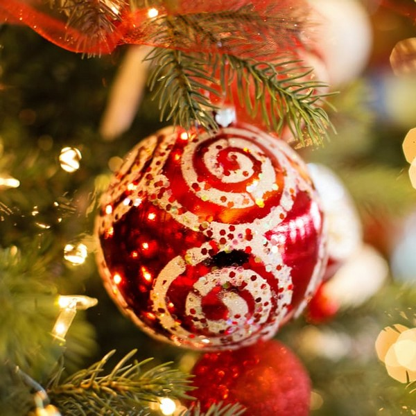 Recettes de Noël à L'Omnicuiseur