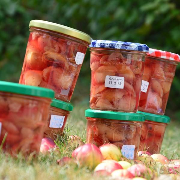 Compote de fruits à la cuisson douce