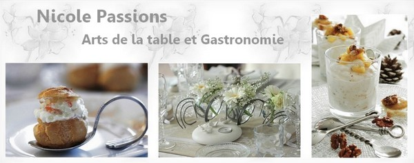 nicole-passions-blog-omnicuiseur