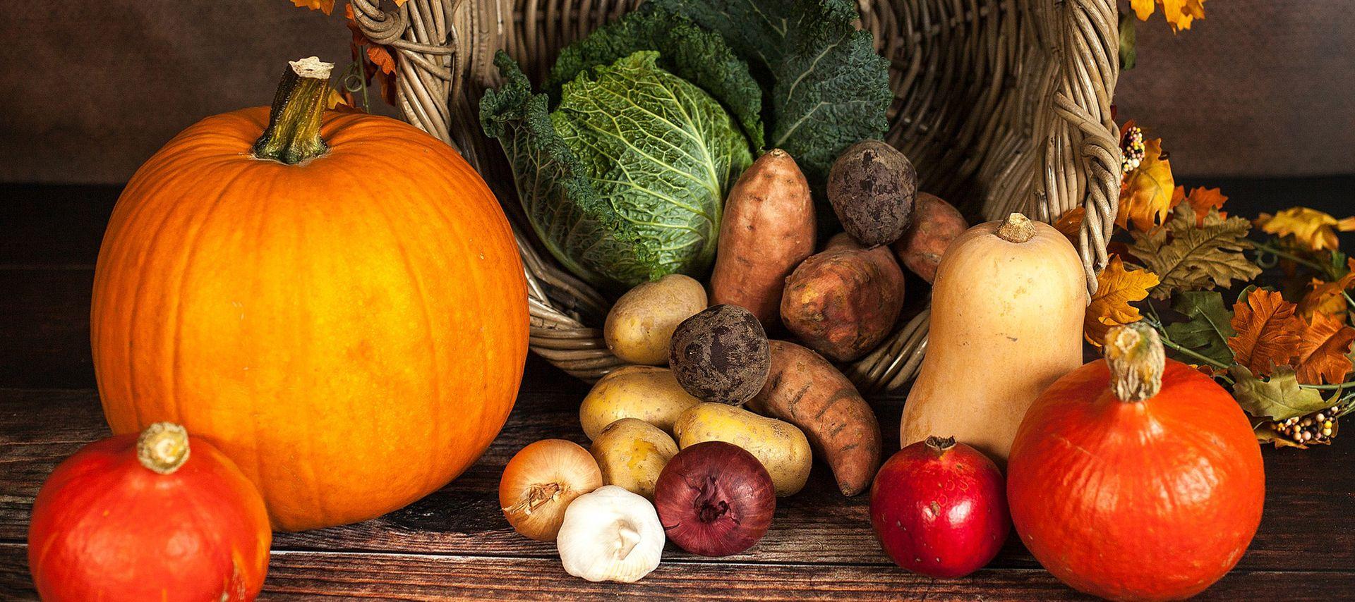 conseil nutrition automne